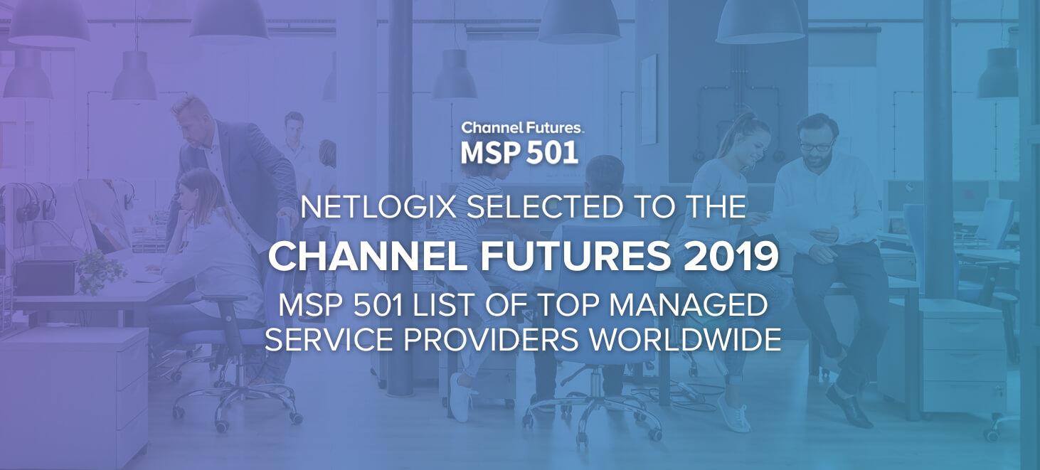 NetLogix MSP 501